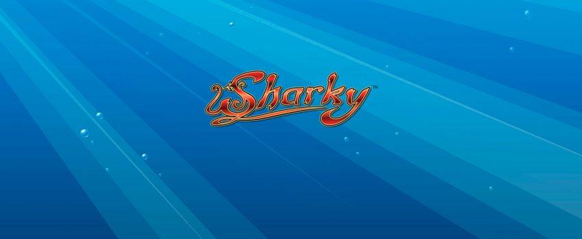 sharky-slotti
