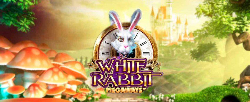 white-rabbit-peliautomaatti